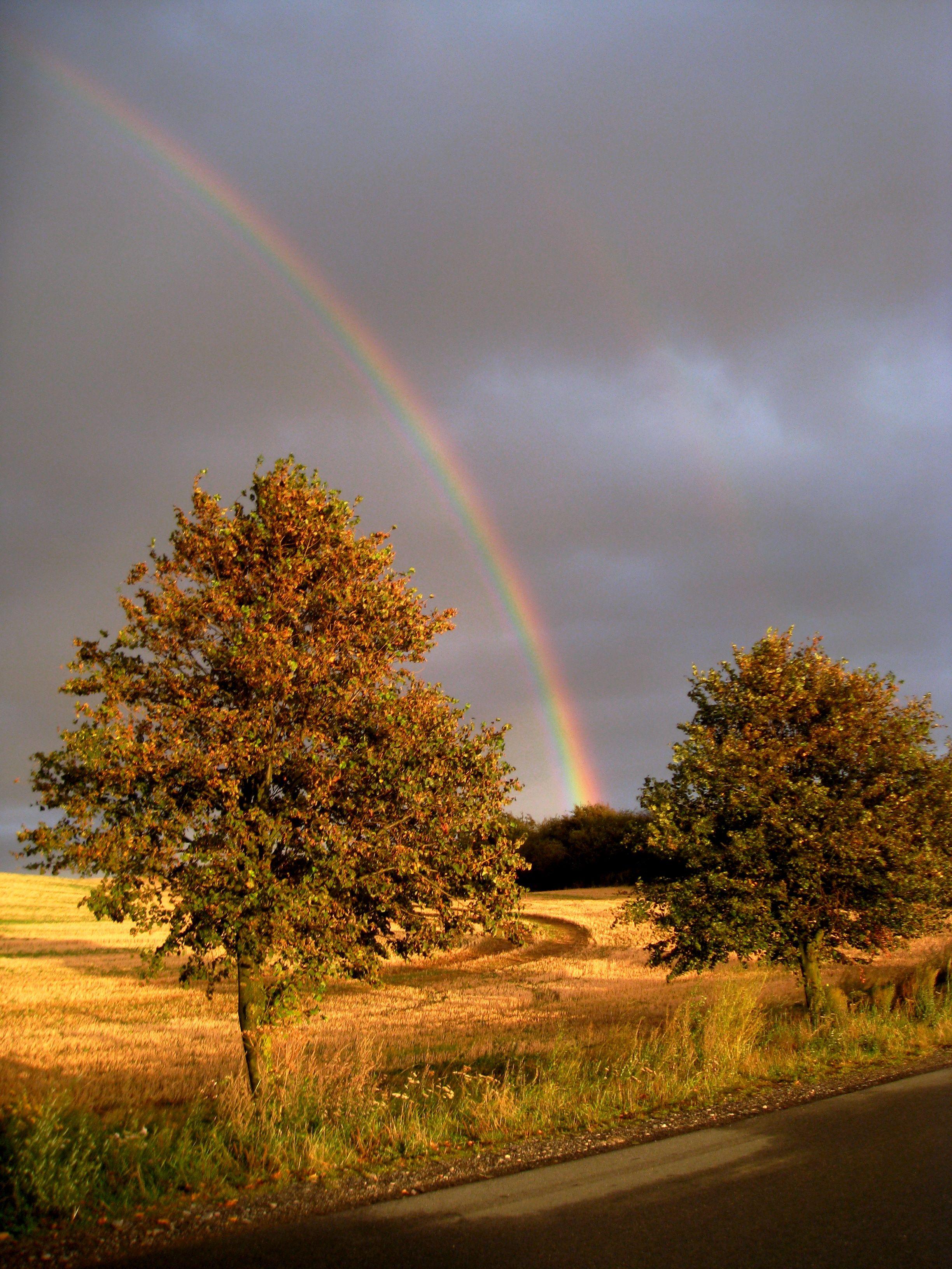 Spätsommer  Wunderschöner Spätsommer im Ostseeland   Gutshof Bastorf Urlaubsblog